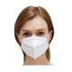 FFP2 Respirator Mask (20)W